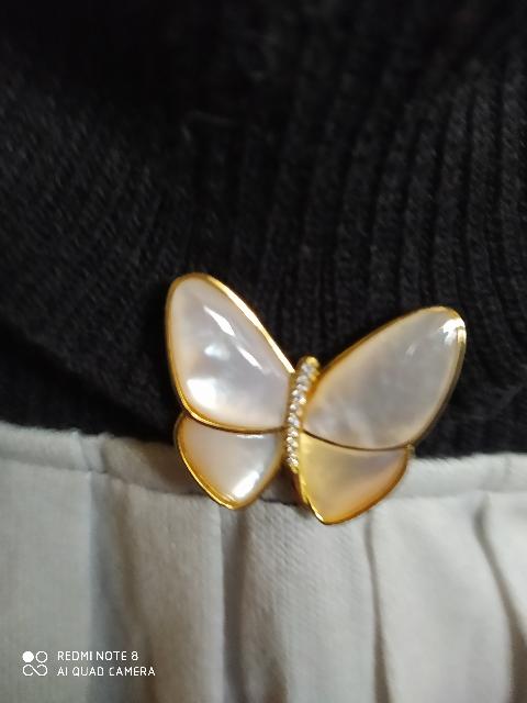 Чудесная бабочка!