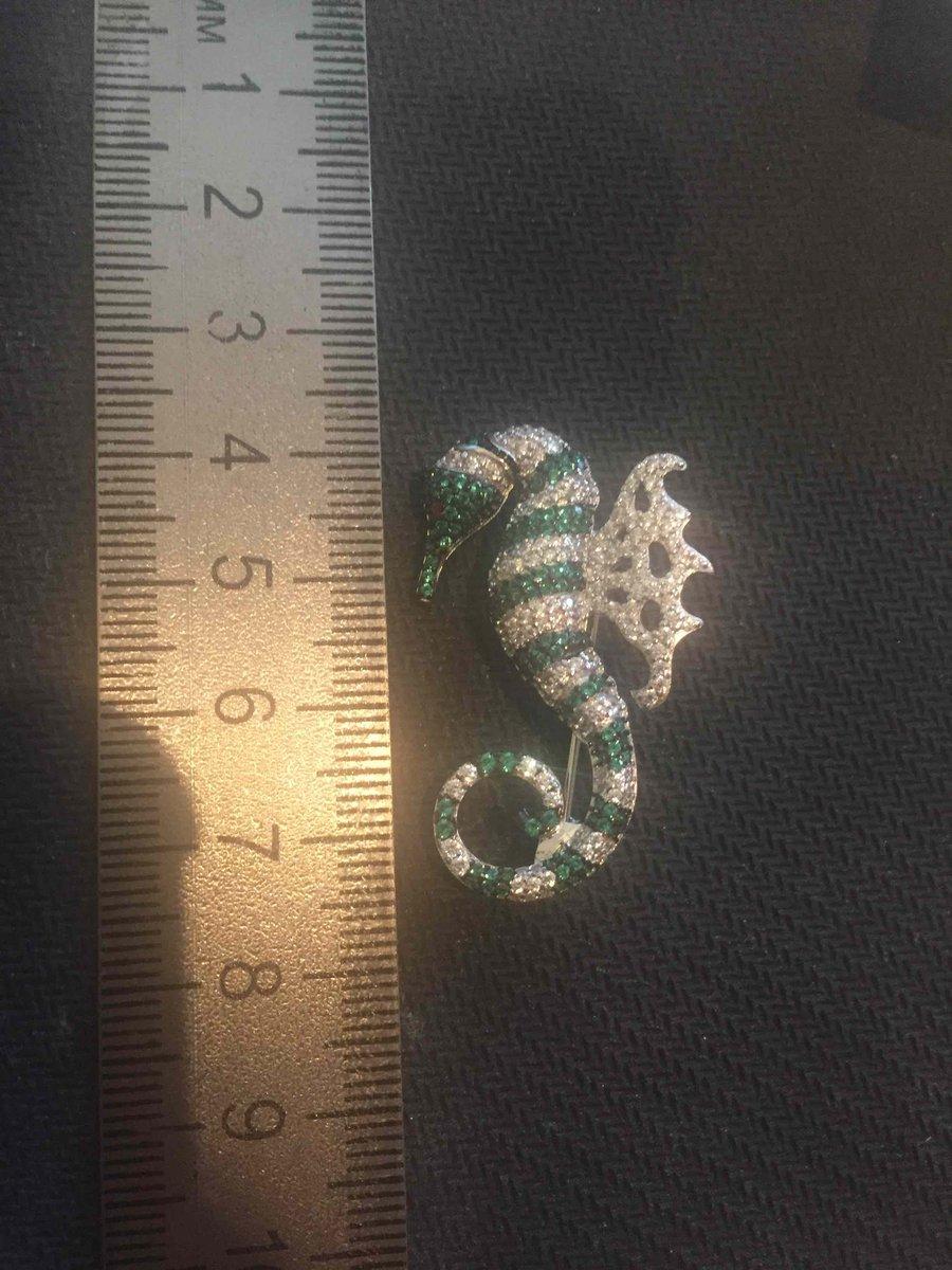 Серебрянный морской конек