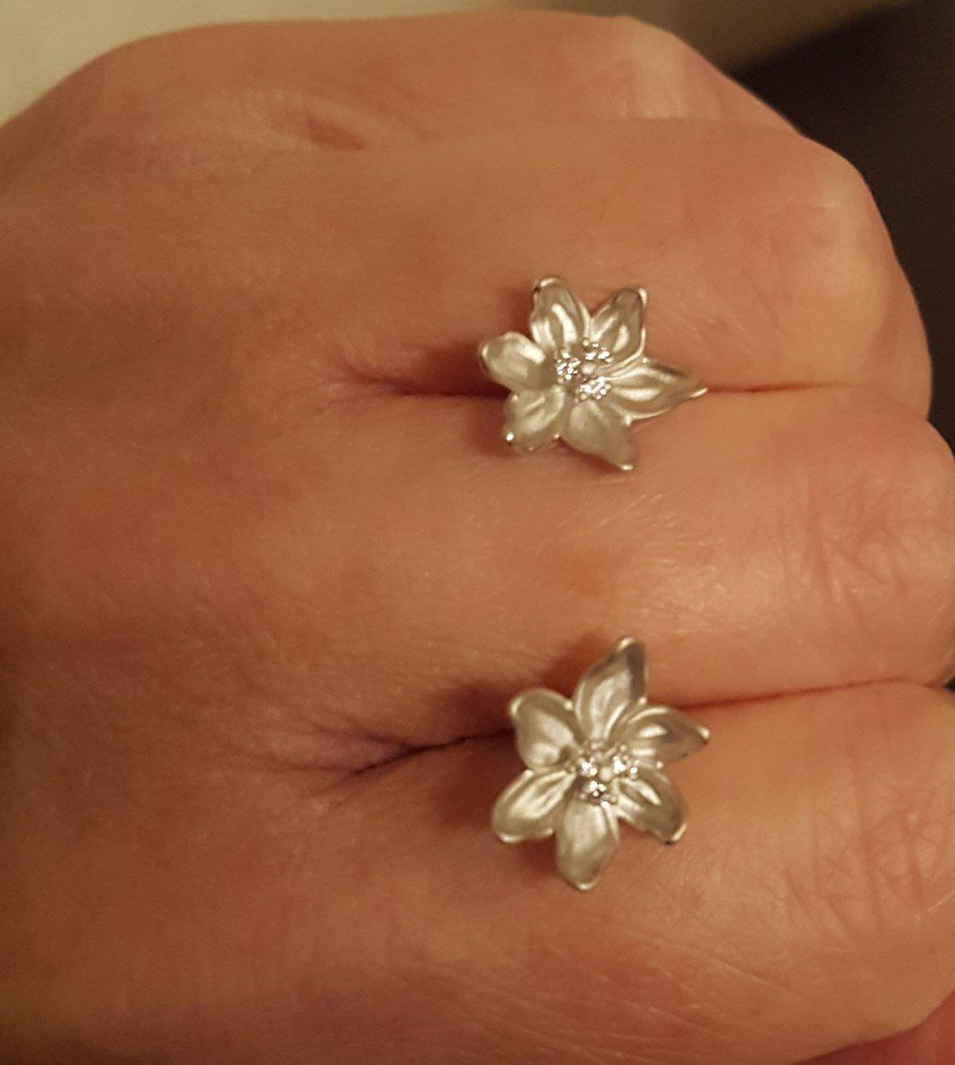 Пусеты серебряные, флористика.